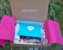 birch3